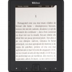ebook-reader-pyrus
