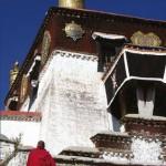Buddhismul si viata