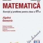 Matematica. Exercitii si probleme pentru clasa a VI-a. Algebra, Geometrie