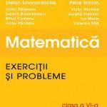 Matematica. Exercitii si probleme. Clasa a VI-a